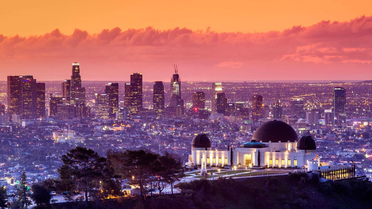 Founded in 2018, BioscienceLA is an innovation catalyst for life sciences and health innovation in the greater LA region, creating more opportunities